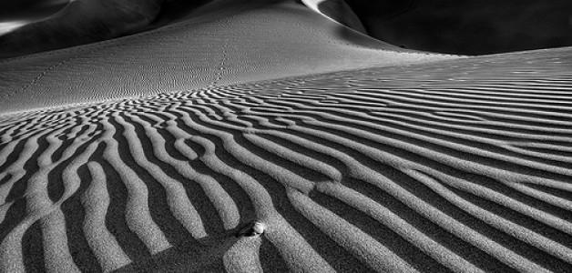 Celebrando los 40 días en el desierto