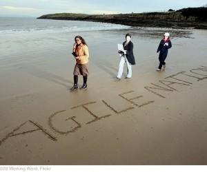 Algunos principios básicos de Agile Business Management